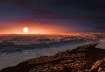 Sun's Neighbor an earth like planet is finally found