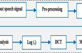 Optimization Based Speech Authentication System